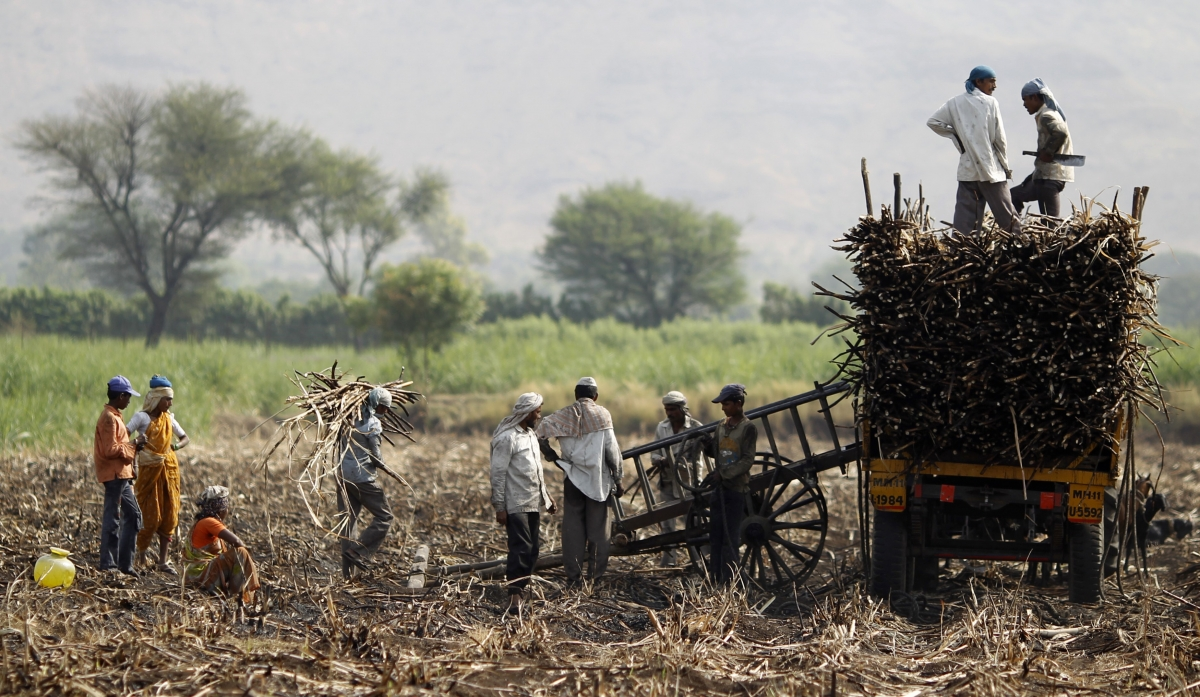 problems faced sugar industry